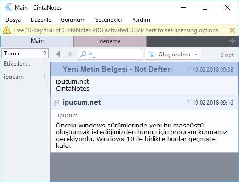 cintanotes windows masaüstü not alma programı indir